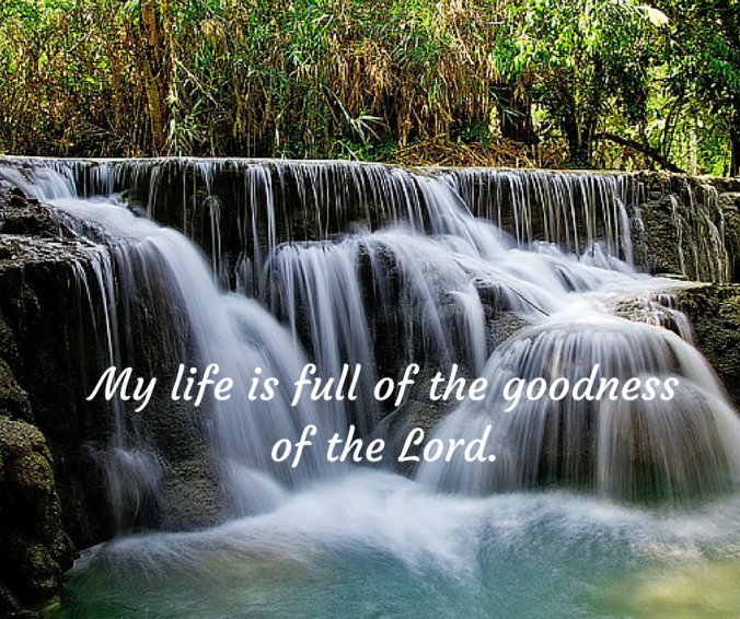 My life is full of the goodness of the Lord.